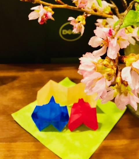 仲良くお花見☆ひな祭り♪